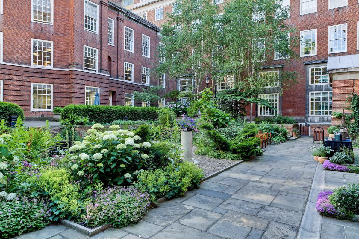 Small BMA House - Garden